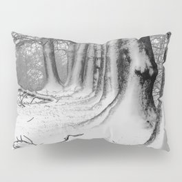 Winter Wonderland 2 Pillow Sham