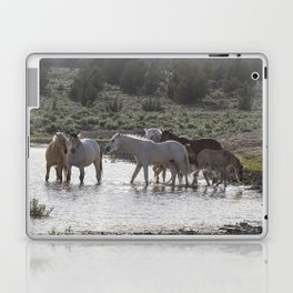 Cooling Off Laptop & iPad Skin