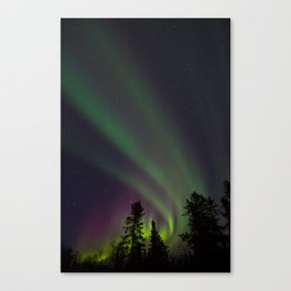 Northern Lights 3 Canvas Print