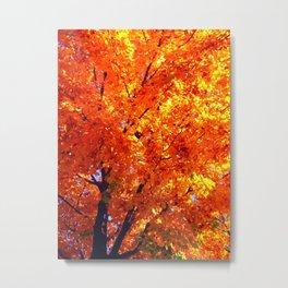 Leaves of Autumn Metal Print