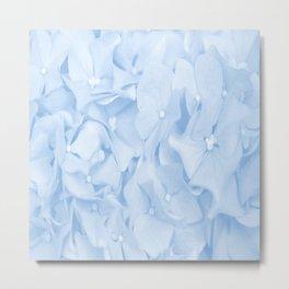Hydrangea Flowers in Pastel Blue Color #decor #society6 #buyart Metal Print