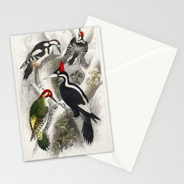 Ivory Billed Woodpecker, Green Woodpecker, Great Spotted Woodpecker, and Lesser Spotted Woodpecker f Stationery Cards