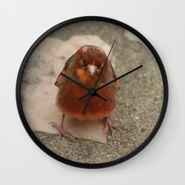 Cute runaway canary bird Wall Clock