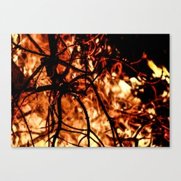 In Flames #2 Canvas Print