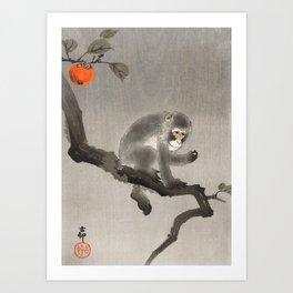 Monkey sitting on persimmon tree - Vintage Japanese Woodblock Print Art Print