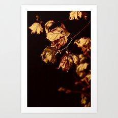 Midnight Leaves Art Print