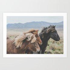Thingeyrar, Iceland Art Print