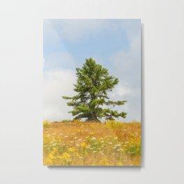 Meadow Warden Metal Print