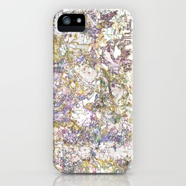maps iPhone Case