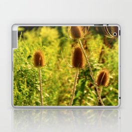 Country Side Laptop & iPad Skin