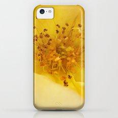 rose iPhone 5c Slim Case