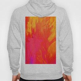 acid orange Hoody