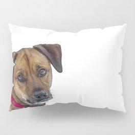 Puppy Dog Eyes Pillow Sham