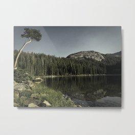 Rosalie Lake Metal Print