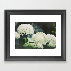 snowball Framed Art Print