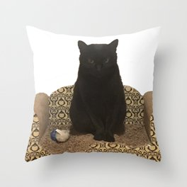 The Queen on her Couch, Edie the Manx, Black Cat Photograph Throw Pillow