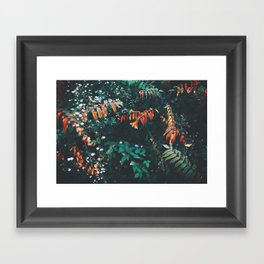 Pops of Colour Framed Art Print