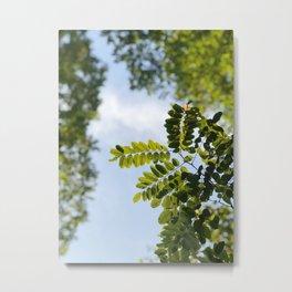 Fern-flection Metal Print