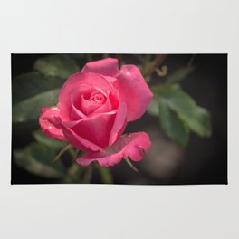 Rose for you Rug