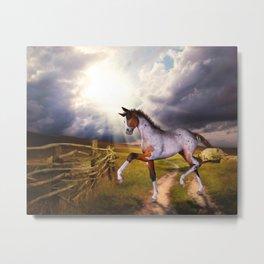 The Little Foal Metal Print