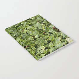 Green Leafs Notebook