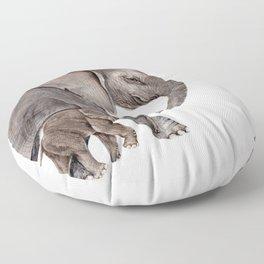 Elephants Floor Pillow