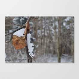 WinterColors Canvas Print