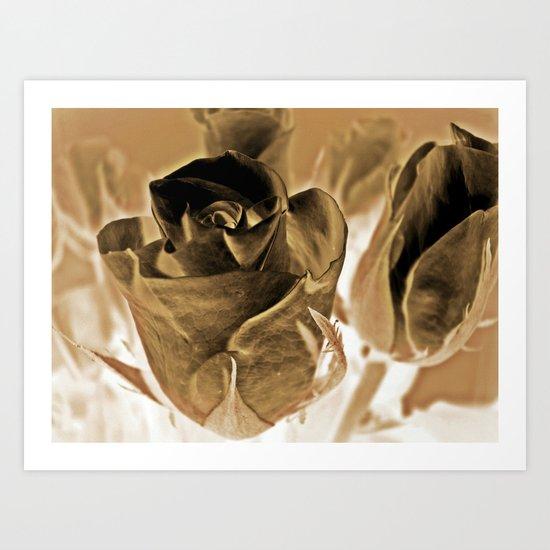 Chocolate roses Art Print