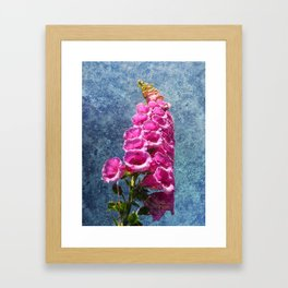 Foxglove with texture reaching for the sky. Framed Art Print