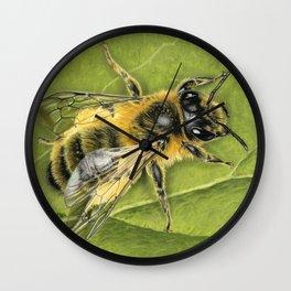 Honeybee On Leaf Wall Clock