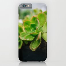 Succulent Rain Drop Slim Case iPhone 6s