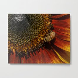 Autumn Sunflower and Bee Metal Print