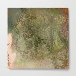 Snail trails on bark Metal Print