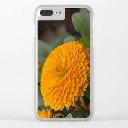 Calendula Flower Clear iPhone Case