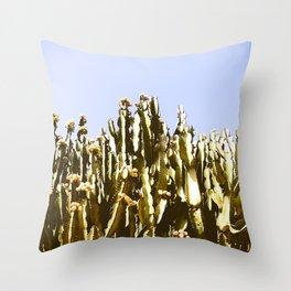 Sticky Cacti Throw Pillow