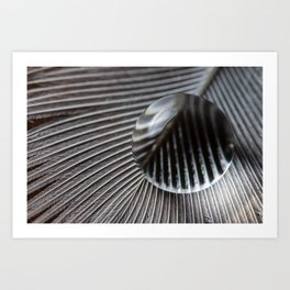 Droplet on feather Art Print