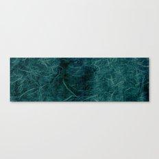Ice Fibers Canvas Print