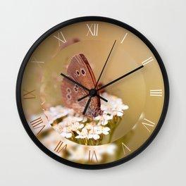 Aphantopus hyperantus butterfly Wall Clock
