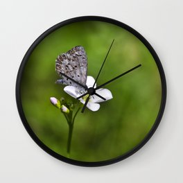 Spring Butterfly Wall Clock