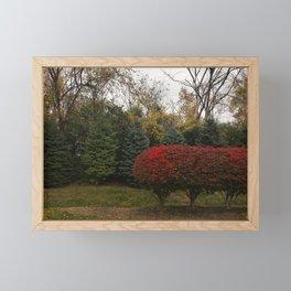 Finding my place Framed Mini Art Print