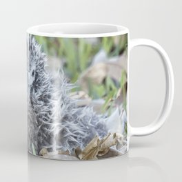 Laysan Albatross Chick, No. 1 Coffee Mug