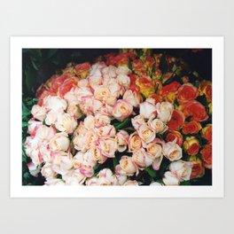 Paris roses Art Print