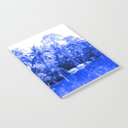 Florida in Blue Notebook