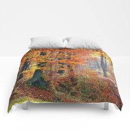 Colorful Autumn Fall Forest Comforters