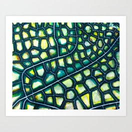 Dragonfly Wing Art Print