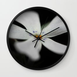 White Phlox Macro Wall Clock