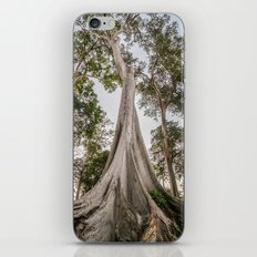 Tree of Wonder iPhone & iPod Skin