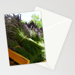 Lavender Bunches in Provence France Stationery Cards