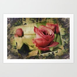 A Boxed Beauty Art Print