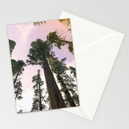 Redwood Portal II Stationery Cards